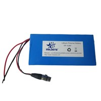 Rechargeable LiFePO4 Battery Pack 37V 9.2ah For Ebike