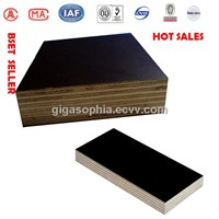 GIGA high quality whole poplar core plywood sheet