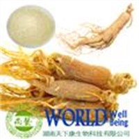 Ginseng root extract ginsenoside 80%  UV
