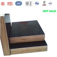 High quality waterproof phenolic gurjan plywood