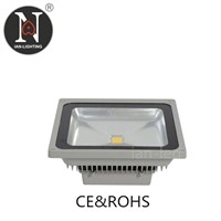 Ian LED Flood Light O3060-10W
