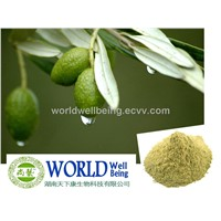 Natural Olive Leaf Extract Powder With Oleuropein