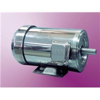 Ns Series Stainless Steel Washdown Duty Motor