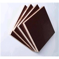 Poplar core black film faced plywood for construction