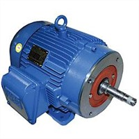 WEG Close-Coupled Pump Motor 00536ET3E184JM-W22