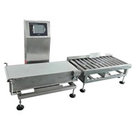 Wide Range Series Check weigher (DCW 1200 )