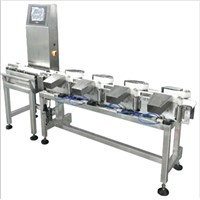 Wide Range Series Checkweigher (DWS-C8)