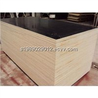black / brown 18mm melamine waterproof film faced plywood