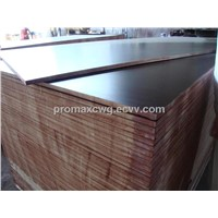 exported brown/black film faced plywood