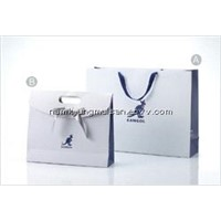 paper shopping bag + paper case