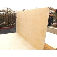 12mm birch soft plywood from China
