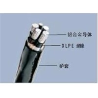 XLPE Insulated, PVC Sheathed electric  cable