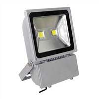 COB 100W LED Flood Lighting/Street Light/Tunnel Lamp/Outdoor Light