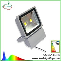 COB LED Flood light 100W