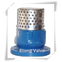Cast Iron Foot Valve Check With Strainer SS Mesh