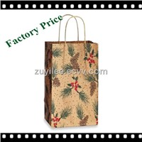 China Manufacturer 160g Brown Kraft Paper Gift Bag