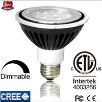 CREE LED PAR30 LED Light
