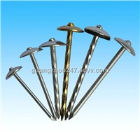 Galvanized Roofing Nails,Umbrella Head Roofing Nails