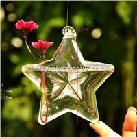 Star Shaped Glass Vase Top Popular Creative Hanging Glass Vase Home Decorative Friend Gift