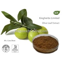 Olive Leaf Extract Oleuropein 20%, 40%, 60% by HPLC