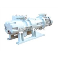 ZJP-150DV Roots Vacuum Pump