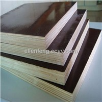 construction use wood timber formwork plywood