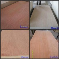 white birch Commercial Plywood Flexible Plywood/Bending Plywood