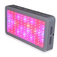 300W led grow light for Led horticulture lighting best for Medicinal plants growth and flowering