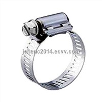 American hose clamp( latest sample)4