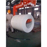 Color coated steel strip(coil)
