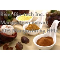 Natural Mangosteen extract with 20% Mangostin by HPLC