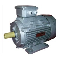 Y2 Three Phase Ac Motor