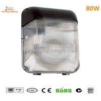 outdoor ceiling lamp light 40w 60w 80w Downlights