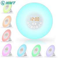 USB Led Wake Up Light Digital Alarm Clock Nature Sound Night Light RGB White FM Radio Touch Modern Table Lamp Lighting for Kids