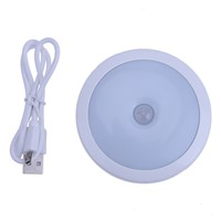 Auto On/Off Induction Lamp USB LED Mini Night Light Activated Corridor Wardrobe Wall Lights Motion Sensor Lamp