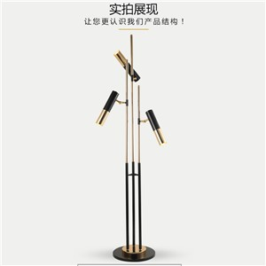 Personalized led floor lamp modern for living room Bedroom bedside floor light Nordic simple floor lamp AC 90-260V
