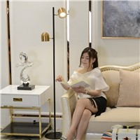 LED floor lamp Luxury golden color Standing Lamp metal body new table desk light modern simplistic design novelty floor light