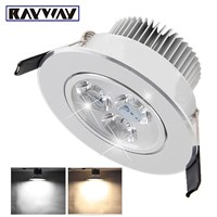 RAYWAY  LED Ceiling Downlight 3W LED Recessed  Spot light Down Lamp Cold White Warm White for  CAbinet  10pcs /lot