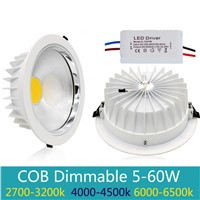 5W 10W 15W 30W 60w 80w white Led Panel Light AC 110-265V Round COB Led ceiling Light Panel Dimmable Led Down Lights With Driver