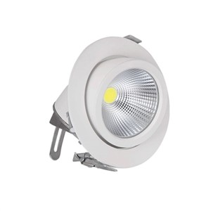 Free shipping 1pcs  30W LED Spotlight of trunk COB lamp,AC85~265V,White Body