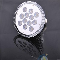 free shipping 2pcs/lots 12w led par light/par38 led lamp bulb.2years warranty