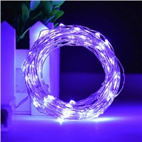 Waterproof 10M 100LED silver Wire String Lights Starry Wedding XMAS string Lights with Power Supply