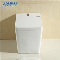 Siphon Flush Toilet Led Bathroom A New Generation Of For Intelligent Multifunctional Toilet Is Hot Frequency Drying Machine