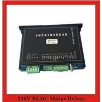 AC220V 350W BLDC Motor Driver Brushless DC Motor Driver Controller BLDH-350A
