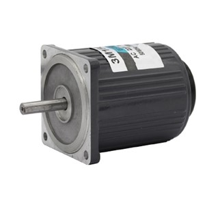 Bringsmart 220V AC Motor 3M15GN-C  15W Reversing High Speed Motor 1400/2800rpm  Reversible Regulation Motor +Speed Controller