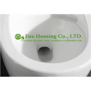 Wc Toilet  S-trap 300mm siphonic one piece toilet with built-in bidet