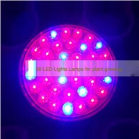 Indoor 1.9W 38 LED Plant Growing Lamp RED and Blue LED Flowering Hydroponic Hydro Light Grow Lamp Bulb