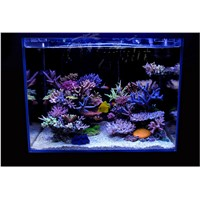 RGB led Fish tank box flashlight Water grass lamp land diving remote control With memory color Discoloration Aquarium lights RGB