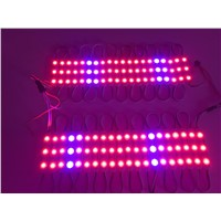 40pcs WS2811 IC DC 12V 3LED SMD 5050 RGB LED waterproof LED module string light garden +power supply + LED controller