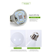 Solar Panel Lighting Kit Solar Home System with 2 bulbs ce,rohs approval